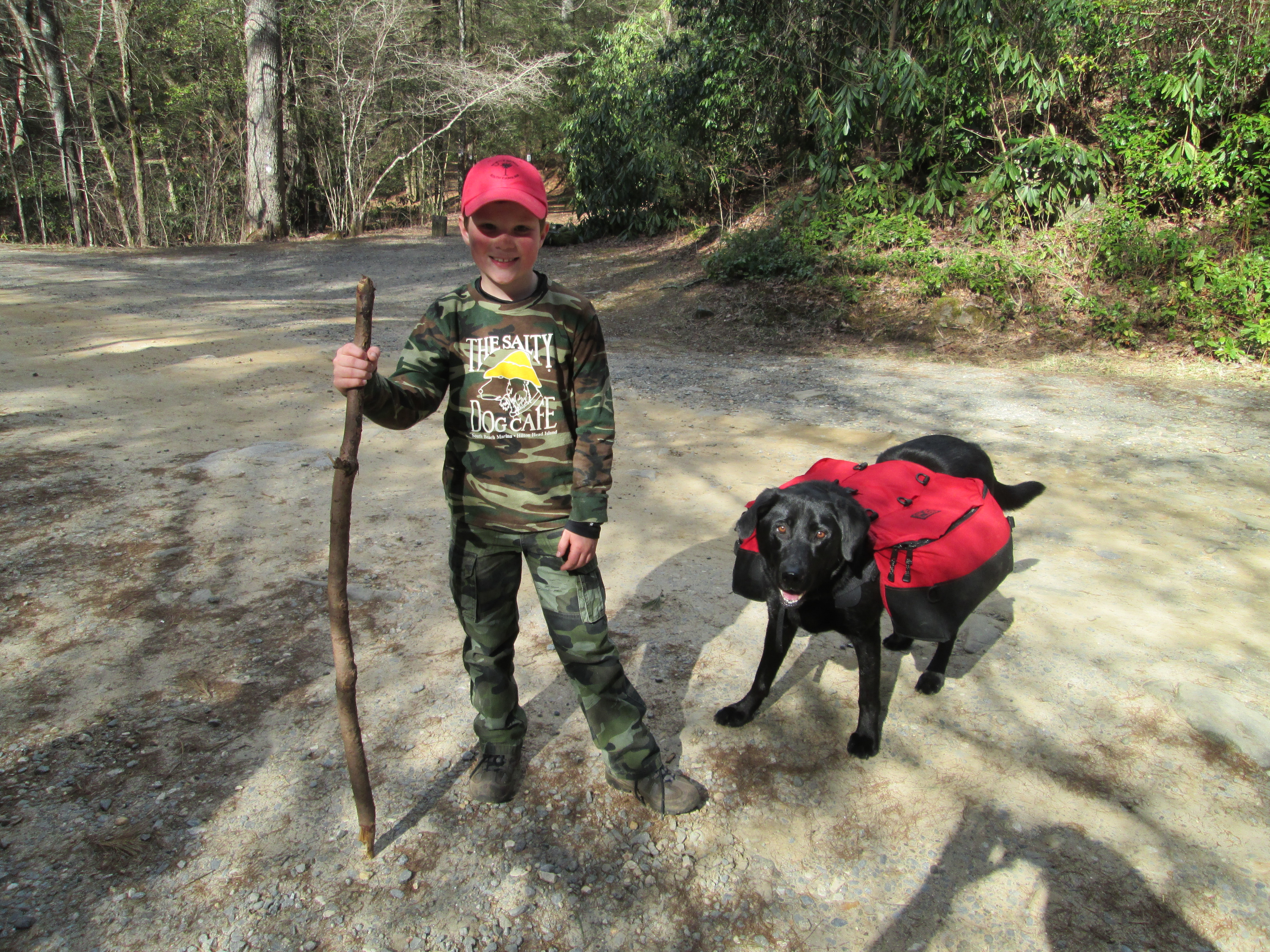Dog Friendly Hiking Trails Oregon